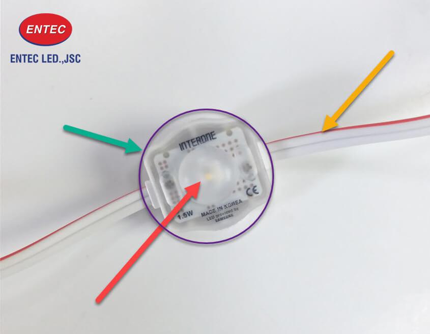 Đèn Led dây siêu sáng 12v