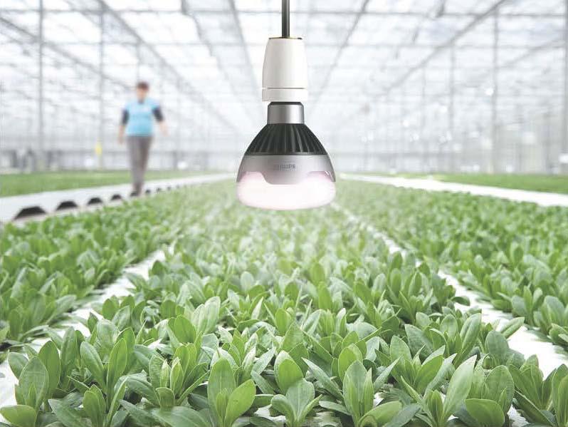 Ánh sáng từ đèn LED - Ánh sáng thông minh đến từ tương lai