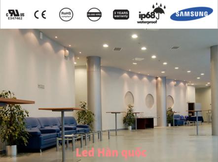 Khám phá dẫn tới quyết định sử dụng đèn LED Downlight