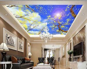 Ứng dụng chiếu sáng nội thất với trần xuyên sáng của các hộ gia đình, bể bơi, bệnh viện, văn phòng….