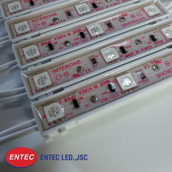 module-led-3-bong-epoxyl-anh-sang-do