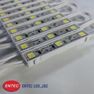 Module LED 3 bóng Epoxy