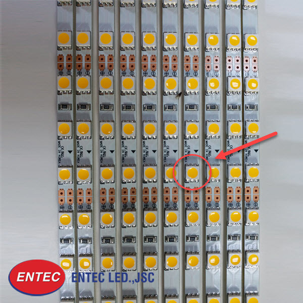 Tập hợp các chip led SMD 5050 được gắn trên mạch