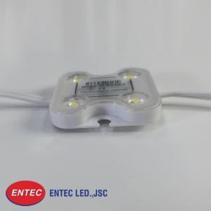 Module LED 4 bóng có len