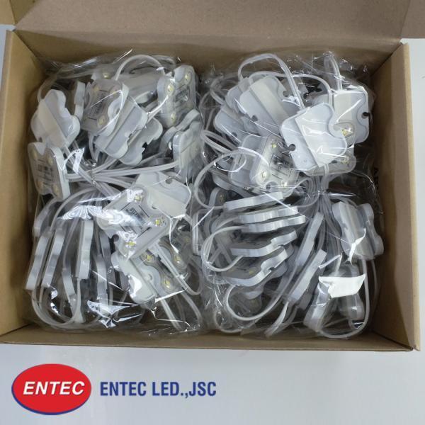 đèn led 4 bóng có len madein korea do entec phân phối độc quyền tại việt nam