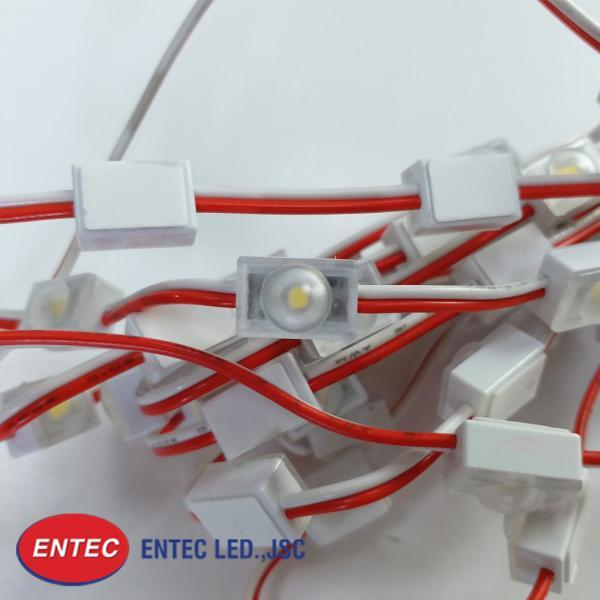 module-led-1-bong-co-len-mini-sieu-sang