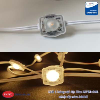 LED 1 bóng INTER ONE 3000K